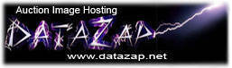 DataZap